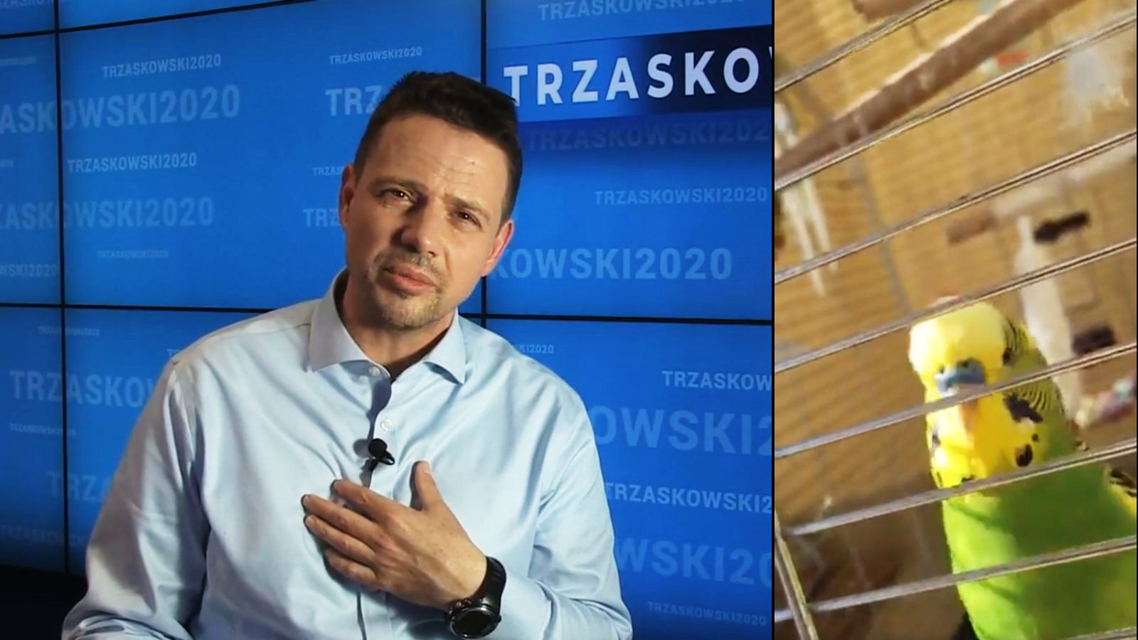 Trzaskowski i papuga